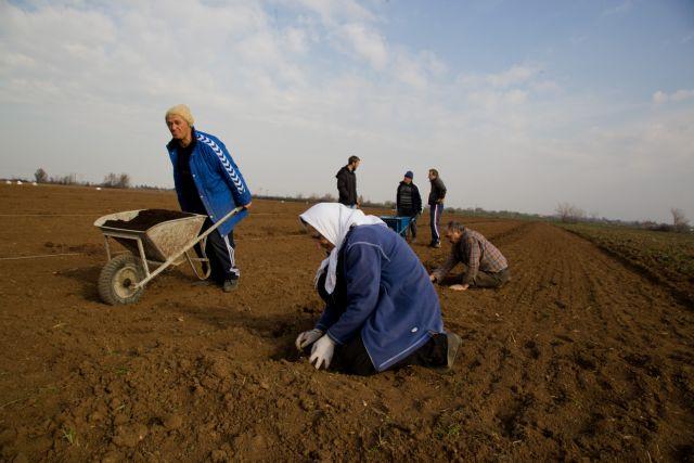 New Democracy MPs request favorable taxation for farmers   tovima.gr