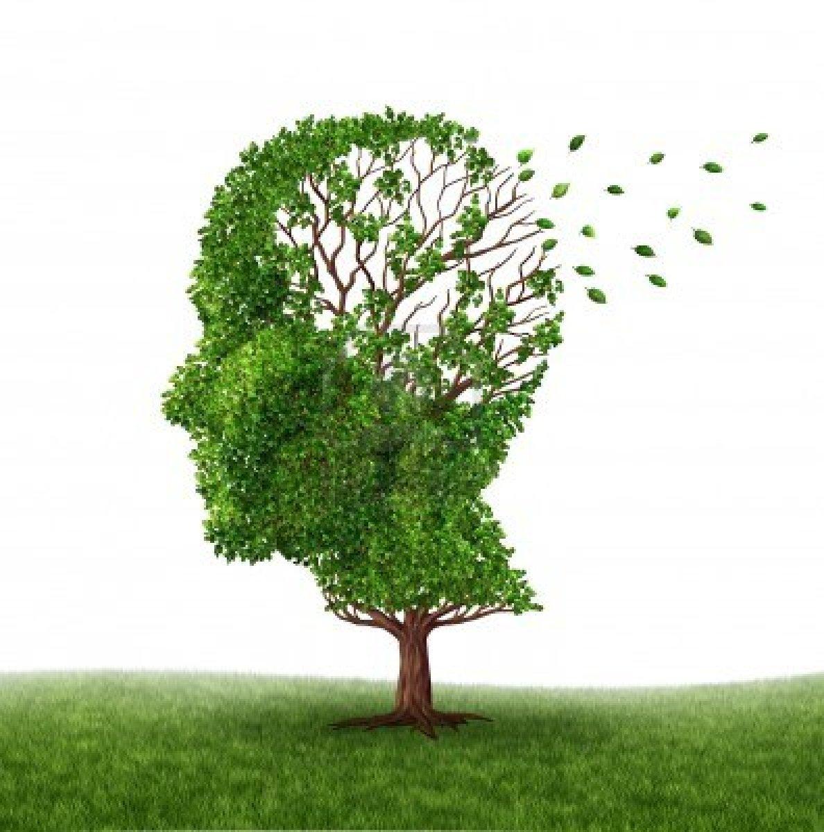 Σεμινάρια για φροντιστές ατόμων με νόσο Αλτσχάιμερ από 2 Νοεμβρίου   tovima.gr