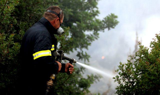 Halkidiki: Major forest fire breaks out at Megali Panagia   tovima.gr