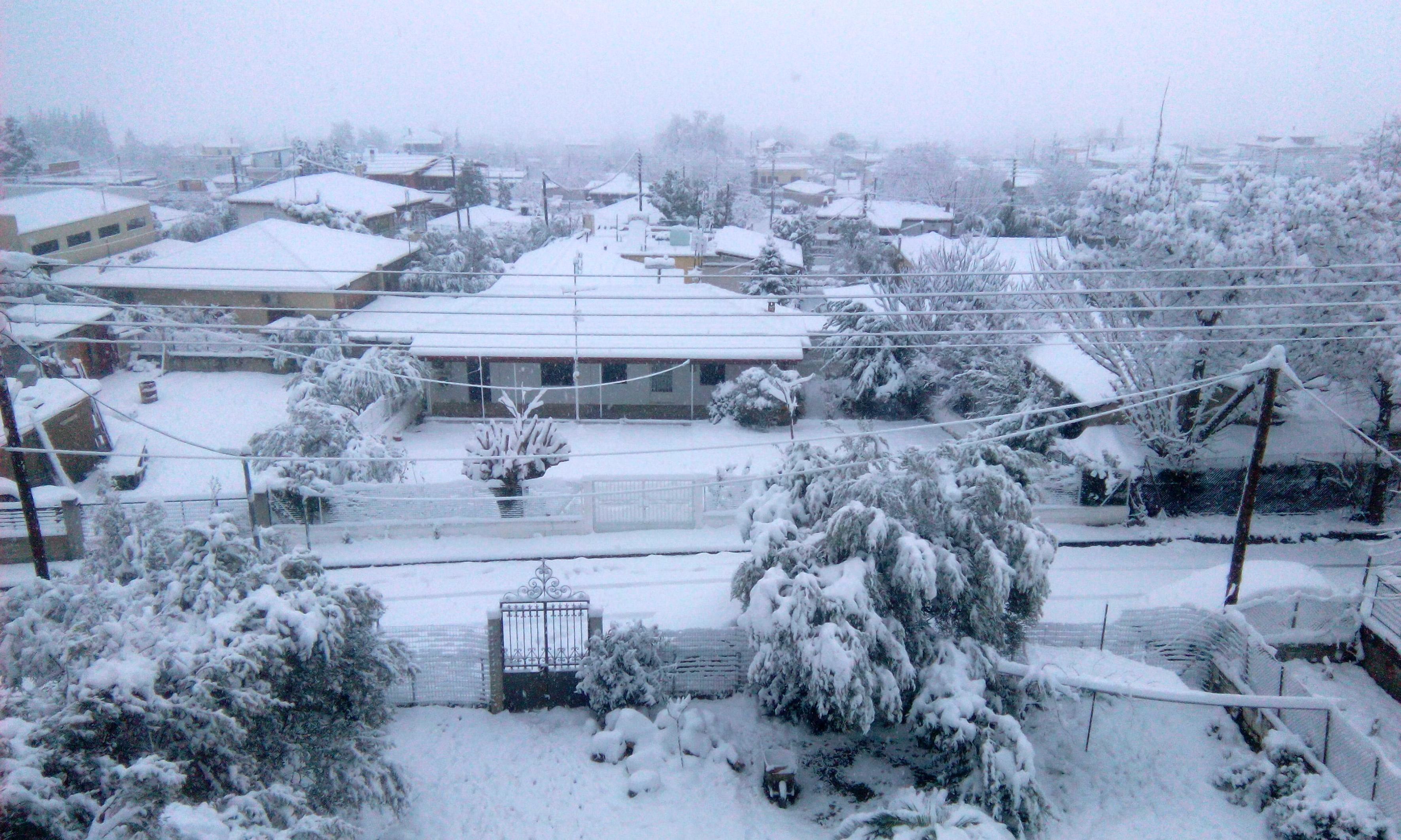 Σε κλοιό ψύχους η χώρα – Χαμηλές θερμοκρασίες και έντονες χιονοπτώσεις   tovima.gr