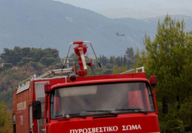 Πυρκαγιά στον Αυλώνα Αττικής   tovima.gr
