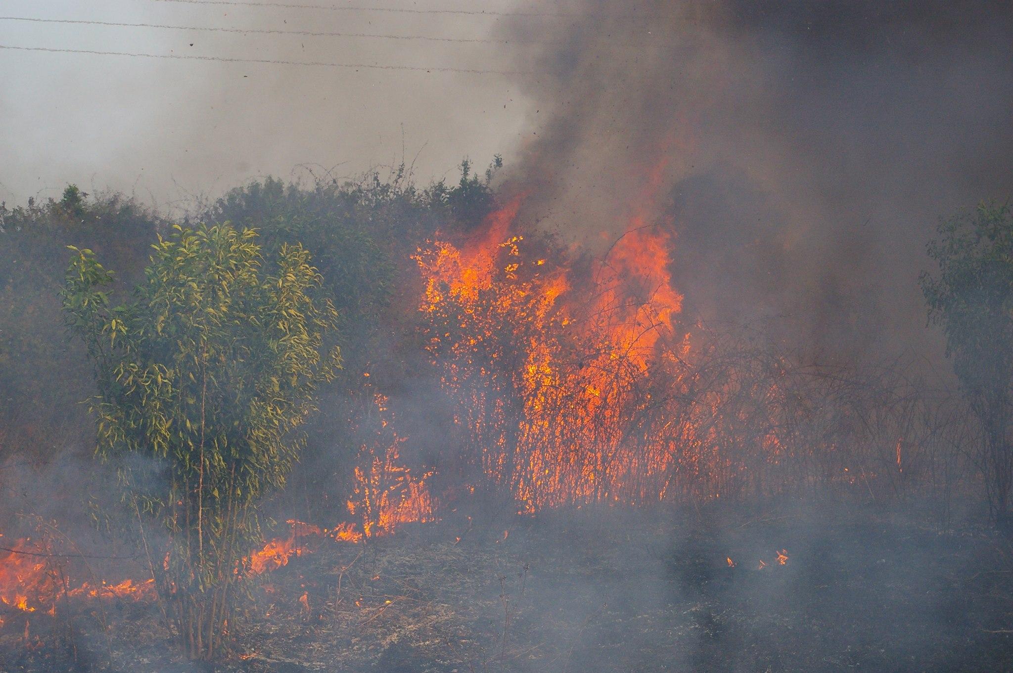 Υπό μερικό έλεγχο η πυρκαγιά στο Κορωπί | tovima.gr