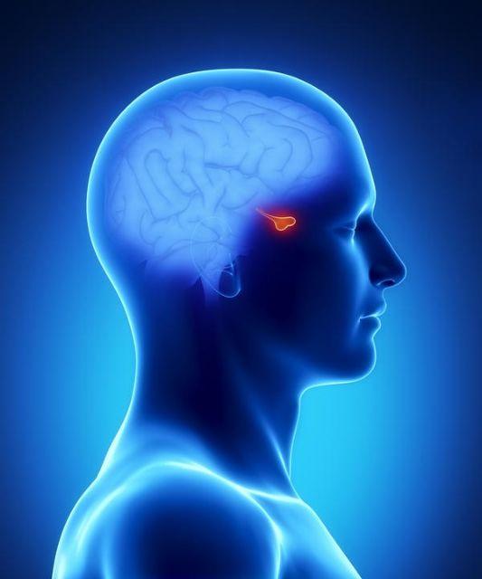 Εντοπίστηκε η πρωτεΐνη του στρες και της κατάθλιψης | tovima.gr