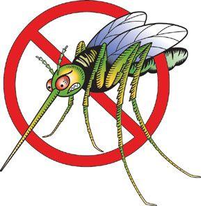 Φυσικές ουσίες κάνουν τον άνθρωπο «αόρατο» στα κουνούπια | tovima.gr