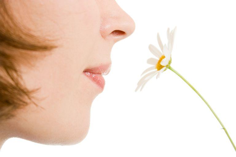 Δέκα μόνο βασικές οσμές αναγνωρίζει η μύτη μας   tovima.gr