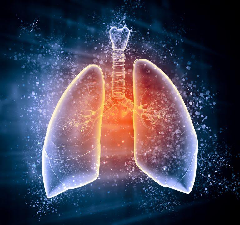 Τρίτη αιτία θανάτου θα είναι η ΧΑΠ ως το 2020 | tovima.gr
