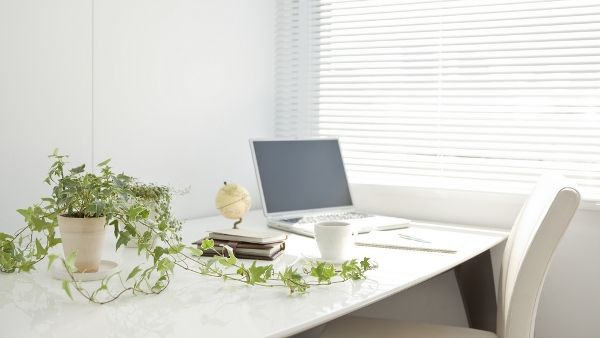 To Wi-Fi σκοτώνει τα φυτά; | tovima.gr