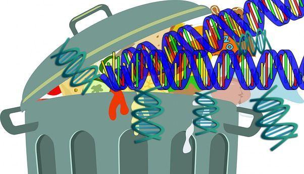 «Αχρηστο» το 92% του DNA μας | tovima.gr