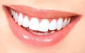 Βλαστοκύτταρα από τα νεύρα σχηματίζουν… δόντια | tovima.gr