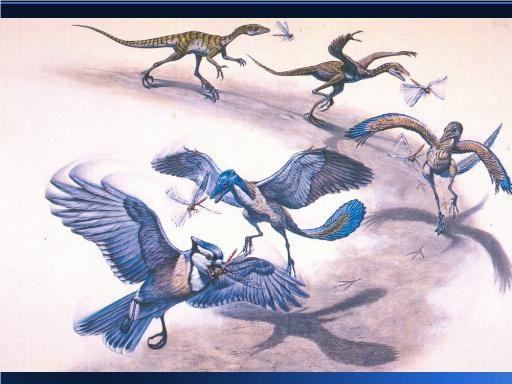 Πως ο Τυραννόσαυρος ρεξ έγινε… πουλάκι | tovima.gr