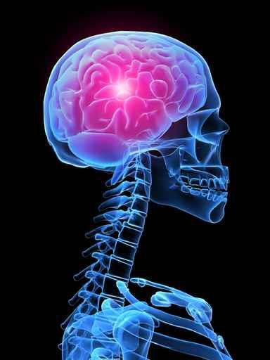 Εντοπίστηκε γονίδιο που ευθύνεται για καρκίνο του εγκεφάλου | tovima.gr