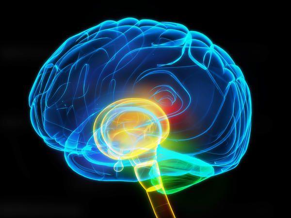 Το κάπνισμα πλήττει τον φλοιό του εγκεφάλου | tovima.gr