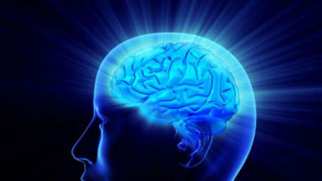 Γονίδιο κλειδί του ανθρώπινου εγκεφάλου | tovima.gr