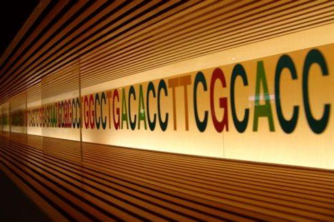Οι περισσότεροι άνθρωποι έχουν το στίγμα γενετικών ασθενειών | tovima.gr