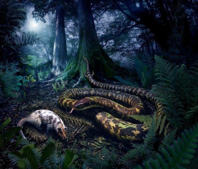 Τα πρώτα φίδια περπατούσαν! | tovima.gr
