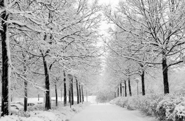 Ο κρύος καιρός είναι serial killer! | tovima.gr