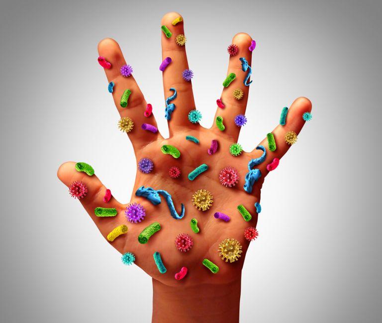 Βακτήρια: Φίλοι, εχθροί και συνεργάτες | tovima.gr