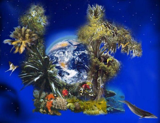 Χέρι χέρι η Γη και η ζωή | tovima.gr