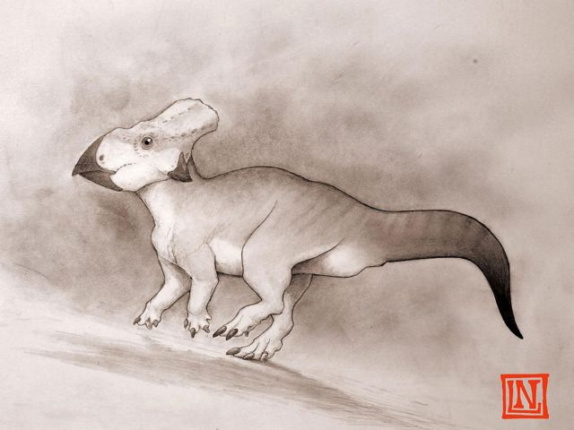 Μίνι δεινόσαυρος ζούσε σε… απομόνωση | tovima.gr