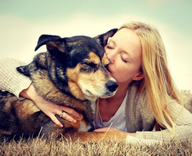 Οι σκύλοι διαβάζουν τα ανθρώπινα συναισθήματα | tovima.gr