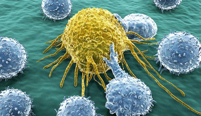 Η «αχίλλειος πτέρνα» των καρκινικών όγκων | tovima.gr