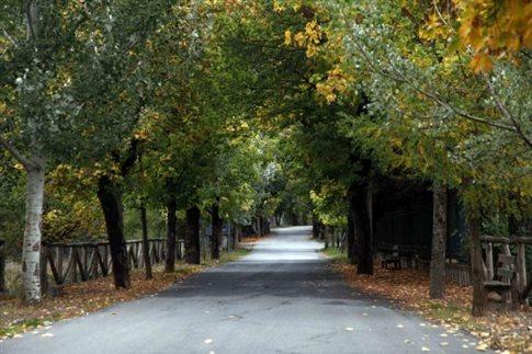 Σχέδιο νόμου για τους δασικούς χάρτες κατέθεσε το υπουργείο Περιβάλλοντος | tovima.gr