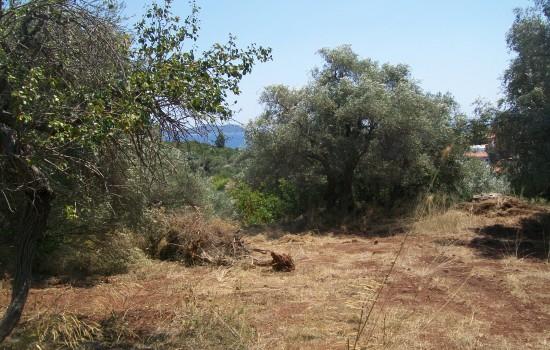 ΕΝΦΙΑ: 230 εκατ. ευρώ το κόστος της εξαίρεσης των αγροτεμαχίων | tovima.gr