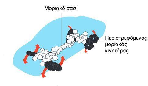 Στους μηχανολόγους του μικρόκοσμου το φετινό Νομπέλ Χημείας | tovima.gr