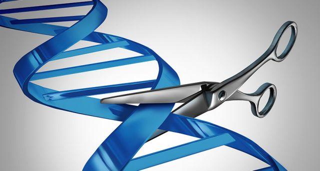 Νεα γονιδιακή τεχνική εξαφανίζει την μεσογειακή αναιμία | tovima.gr