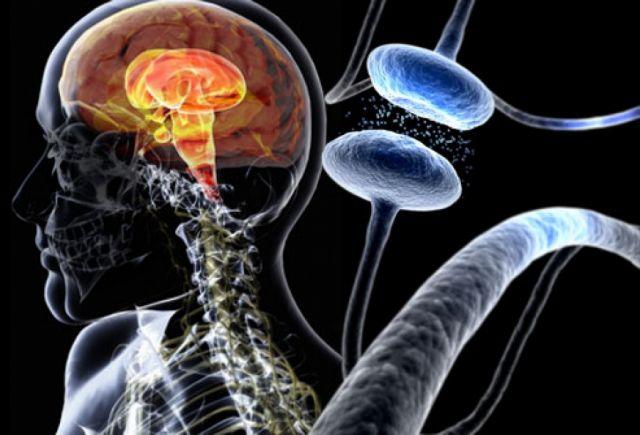 Η νόσος του Πάρκινσον περνάει από το… στομάχι | tovima.gr