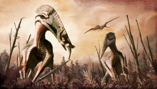 Ο T.rex των ουρανών | tovima.gr