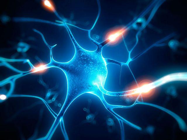 Θεραπεία για πλήθος νευροεκφυλιστικών νόσων | tovima.gr
