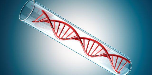 Γενετικό τεστ προβλέπει τον κίνδυνο καρκίνου των όρχεων | tovima.gr