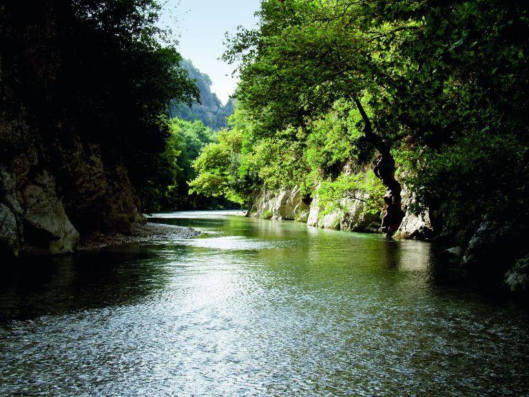 Ο ποταμός των ζωντανών   tovima.gr