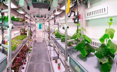 Λαχανικά στο Διάστημα από ευρωπαίους επιστήμονες   tovima.gr