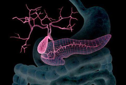 Ερευνητές ανακοίνωσαν ότι θεράπευσαν τον διαβήτη τύπου 1   tovima.gr