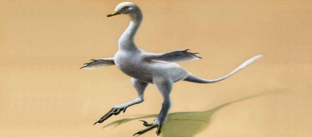 Ανακαλύφθηκε ο πρώτος αμφίβιος σαρκοβόρος δεινόσαυρος | tovima.gr