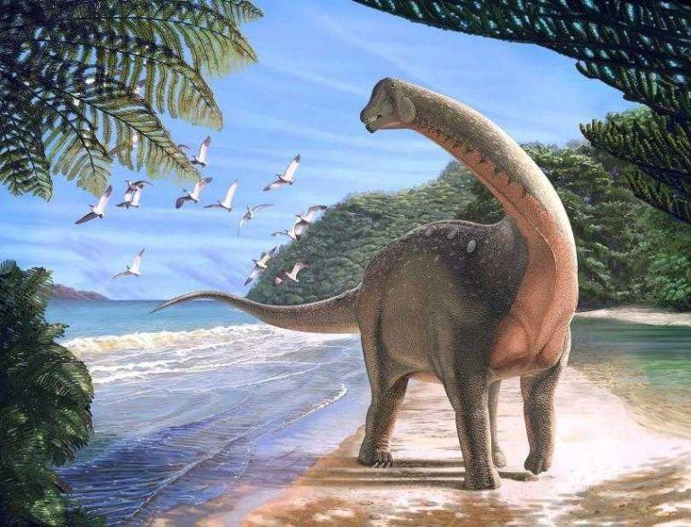Δεινόσαυρος-λεωφορείο ζούσε στην Σαχάρα | tovima.gr