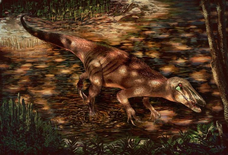 Ανακαλύφθηκε άγνωστος μοχθηρός δεινόσαυρος | tovima.gr