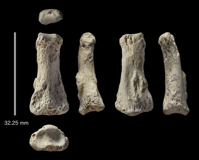 Ανακαλύφθηκε απολίθωμα του Homo sapiens ηλικίας 90.000 ετών στη Σ.Αραβία | tovima.gr