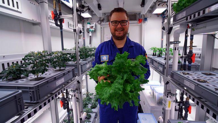 Ερευνητές κατάφεραν να καλλιεργήσουν λαχανικά χωρίς ηλιακό φως στην Ανταρκτική | tovima.gr