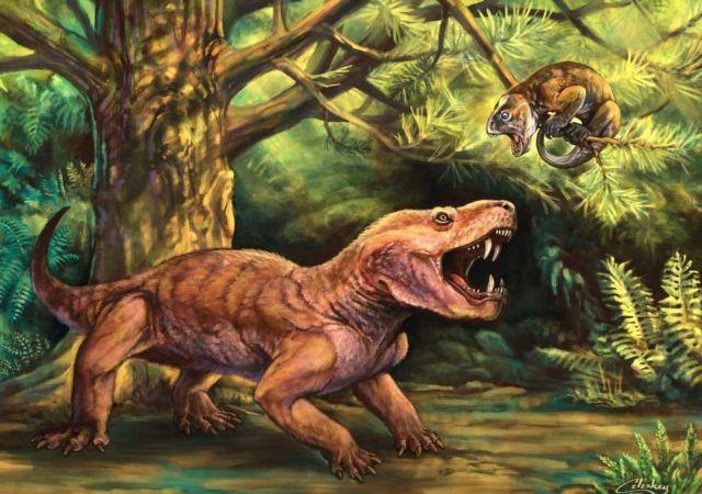 Τα άγνωστα θηρία που δεν συνάντησαν οι δεινόσαυροι | tovima.gr