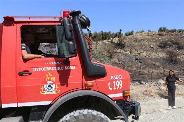 Πυρκαγιά σε δασική έκταση στο Ρέθυμνο | tovima.gr