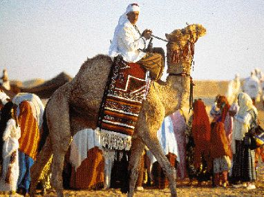 Τυνησία | tovima.gr