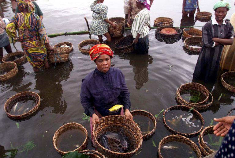 Αποζημίωση €70 εκατ. σε ψαράδες της Νιγηρίας από τη Shell | tovima.gr