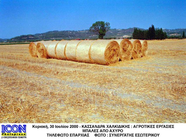 Ηλεκτρική ενέργεια από άχυρο στο θεσσαλικό κάμπο   tovima.gr