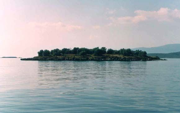 Ανθρώπινο κρανίο και οστά σε νησάκι στη Φωκίδα | tovima.gr