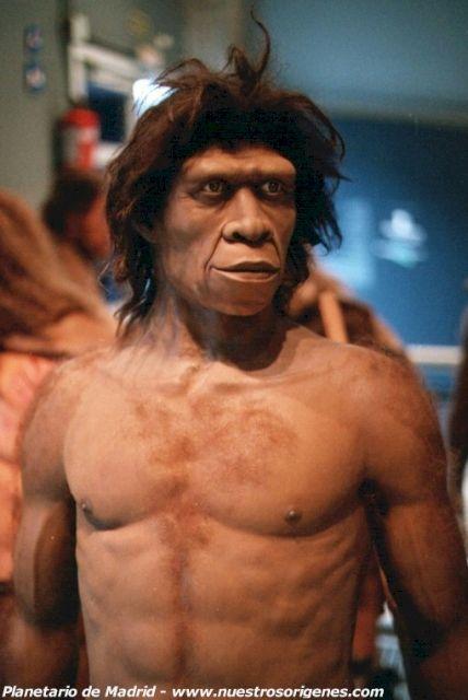 Ο Homo erectus «εφηύρε» τον λόγο και έτσι μπόρεσε να ταξιδέψει | tovima.gr