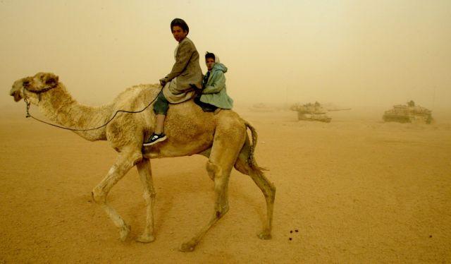 Mολυσμένες από MERS οι καμήλες στη Σ. Αραβία   tovima.gr