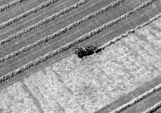 Οι επιπτώσεις της κλιματικής αλλαγής στον αγροτικό τομέα και μέτρα προσαρμογής   tovima.gr